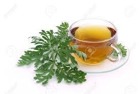 Herbal Tea Anti Parasite - proti parazitům - recenze - kapky - Amazon